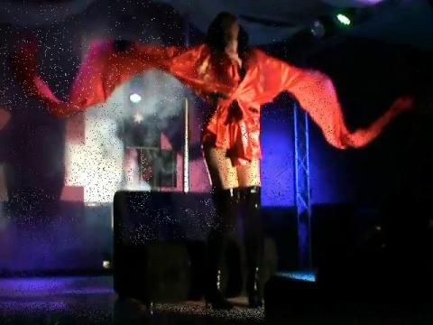 Valentine Vidal Geisha show