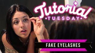 Fake Lashes: How To Apply Strip Lashes&How To Apply Individual Lashes!