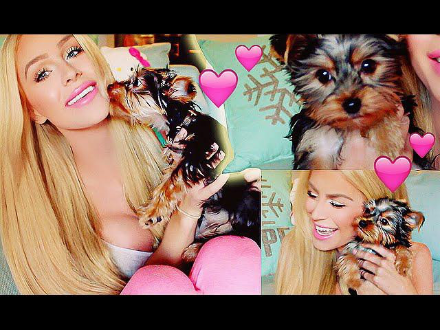 MY NEW PUPPY!!! | Gigi