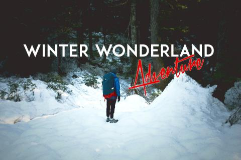 WALKING IN A WINTER WONDERLAND || Adventure Diary #8