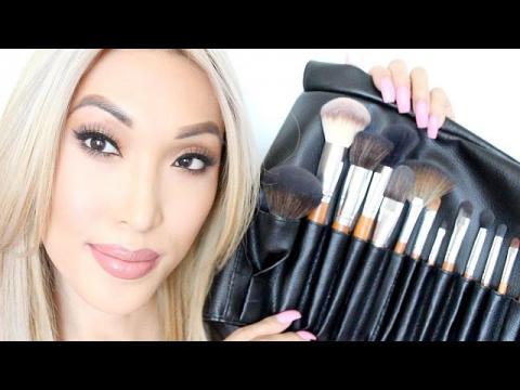 Makeup Brushes For Beginners (VP Palette 15 Brush Set)