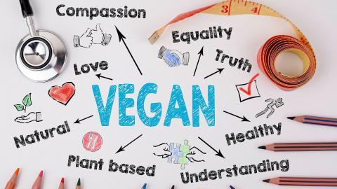 Is Veganism Hateful | Towards the Future (Episode 1)