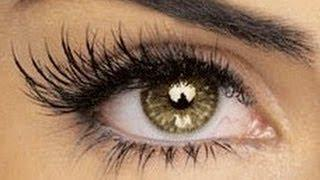 Longer Eyelashes Without Falsies Makeup Tutorial!
