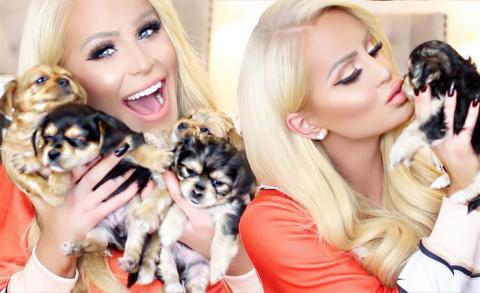 MEET MY PUPPIES! | Gigi